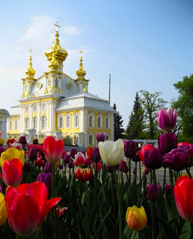 St Petersburg in July: Pros and Cons of Visit